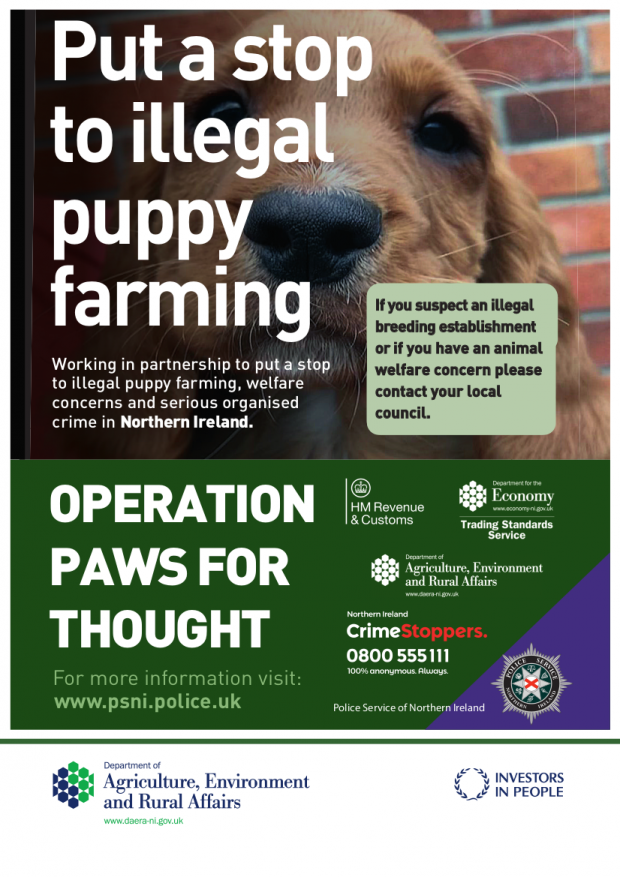 Put a stop to illegal puppy farming. Working in partnership to put a stop to illegal puppy farming, welfare concerns and serious organised crime in Northern Ireland.