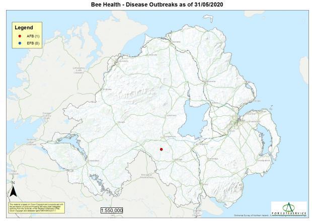 Map of disease outbreaks in Northern Ireland in bees during twenty twenty