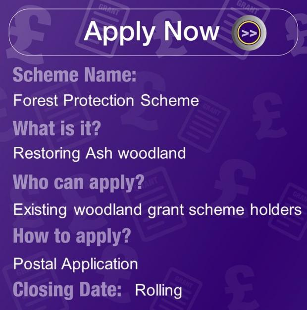 Forest Protection Scheme, Restoring Ash woodlands for Existing woodland grant scheme holders. Apply with Postal application, rolling