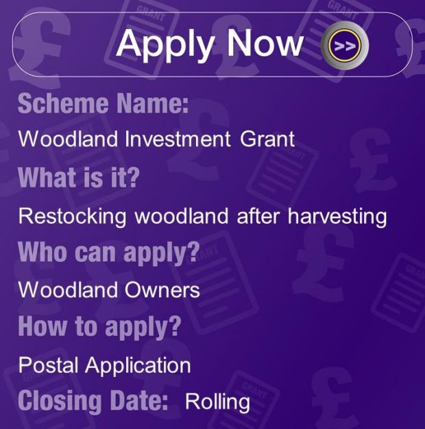 Woodland Investment Grant, Restocking woodland after harvesting for Woodland owners. Apply with Postal application, rolling