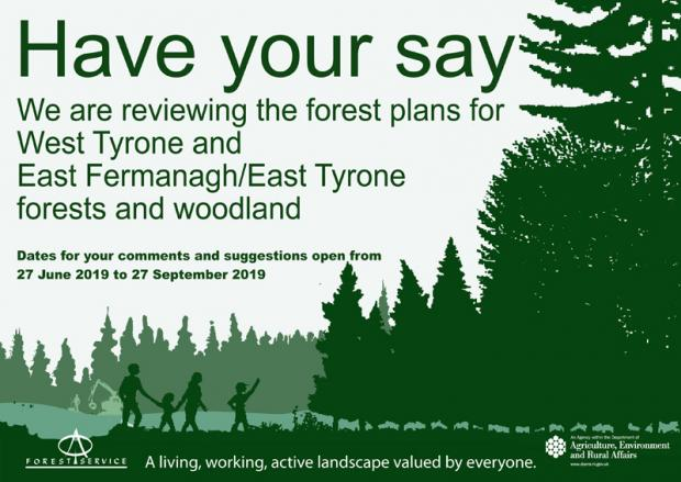 Have your say - flyer