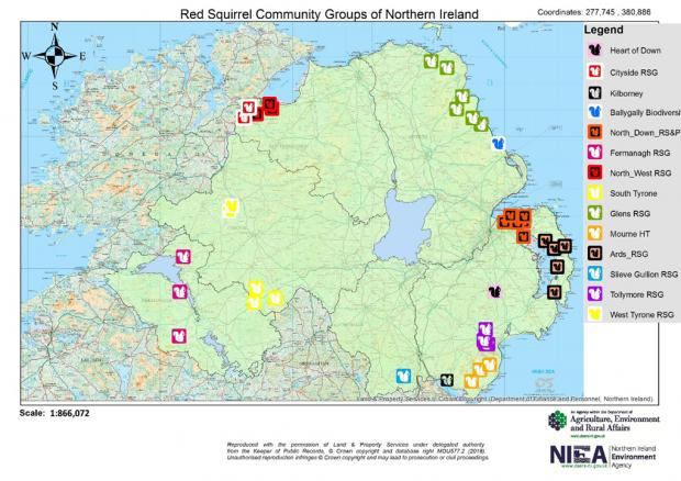 red squirrel map