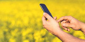 Image of mobile phone user in a field